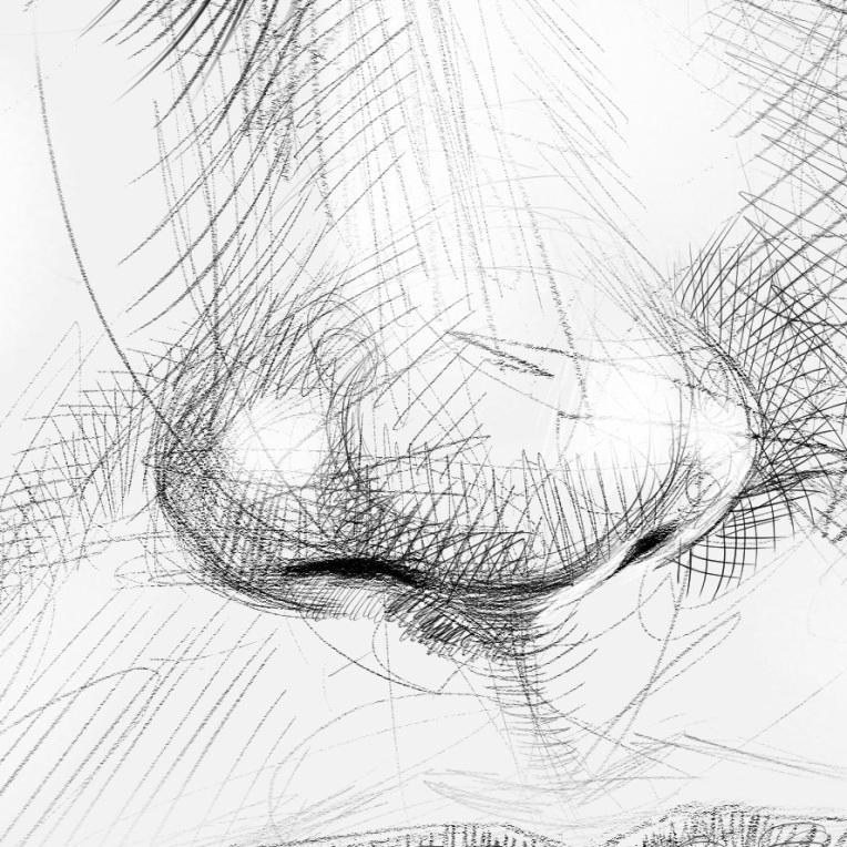 180327 100 percent nose